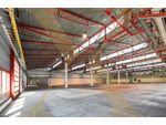 ZUKUNFTSPARK+ | Lager-/Produktionshallen inkl. Büroflächen in Tulln zu vermieten - Erweiterungsmöglichkeit gegeben!