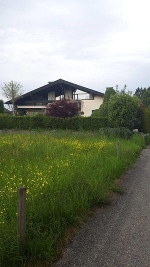 Baugrundstück und/oder angrenzendes Einfamilienhaus - Versteigerungsobjekt