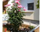 Ferienhaus   für 2-4 Personen in Ungarn