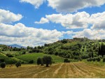 Italien - Toskana: 26.000 m² Grund mit Toskana-Villa, Apartments und Gästezimmer
