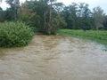 Hochwasserdamm Leibnitz