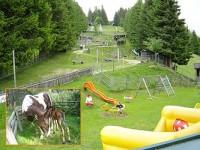 Märchenalm - Urlaub mit Kindern in der Steiermark