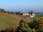 Weingut - Buschenschank Zuser