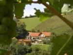 Buschenschank-Gästezimmer-Weingut Stoff vlg. Winkelmachl