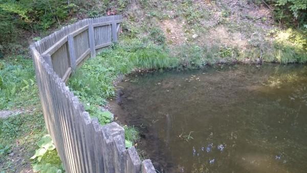 Teich hinter der alten Wassermühle in Eichberg Trautenburg