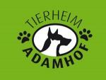 Neues vom Tierheim Adamhof