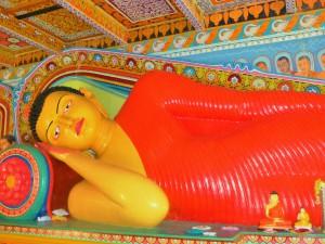 Auf den Spuren des Buddha