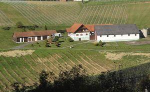 Einfamilienhaus inmitten der Weinberge der steirischen Toskana!