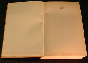 """Buch Stephen King """"Sie"""""""