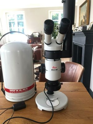 Leica Mikroskop Wild M8 mit Fototubus HU 404891