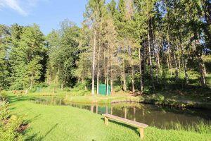 Weitläufiges Idyll bei Graz: Freiland mit Wald- und Wiesenflächen sowie großem Teich