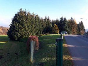 Nutzgrund/kleiner Wald/kein Baugrund