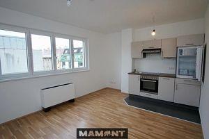 639,00 pro Monat 2-Zimmer Wohnung | alle Räume klimatisiert | sofort verfügbar! (T40)
