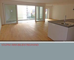 Erstbezug: Ideal Aufgeteilte Wohnung mit Loggia! Nahe Donaupark.