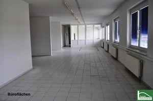TOLLES Büro, Lager, Geschäft! Zufahrt mit großen LKW's möglich! 10 m² - 1500 m²! Ab 25€ Netto im Monat!! Gewerbepark Donnerskirchen !!
