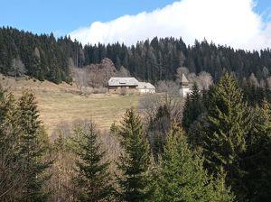 Ruheoase mit Aussicht! Bauernhof auf 1000 m Seehöhe in Alleinlage!
