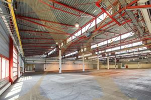 ZUKUNFTSPARK+ | Lager-/Produktionshallen inkl. Büroflächen in Tulln zu vermieten - Erweiterungsmöglichkeit gegeben