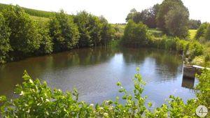 Genehmigte Teichanlage