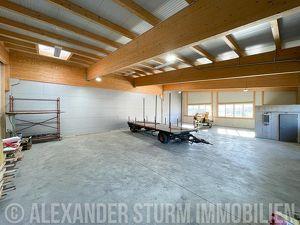 Vielseitige Lager-/Produktionshalle in Hallein