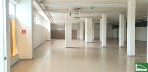 IHRE PRAXIS/ORDINATION in guter Lage! Fischamend!- TOPLAGE - Atelierfläche mit Lager & 2 WCs - PROVISIONSFREI!