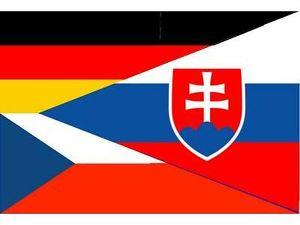 Günstig,schnell-Übersetzungen Tschechisch,Slowakisch,Deutsch