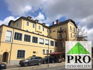 Waldviertel-Highlight! Traumhafte Eigentumswohnungen in Rosenburg-Mold mit 300m2 gr. Eigengarten!