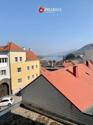 Zweizimmer - Wohnung mit Donaublick