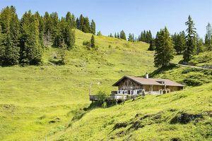 """[PACHT] Gut geführtes und überregional bekanntes Almgasthaus """"Brennhütte"""""""