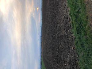 2ha Ackerland zu verkaufen