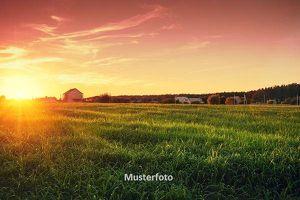 Land und Forstwirtschaft, Wesenufer Versteigerungsobjekt