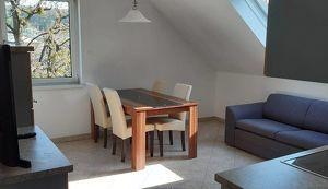 Top gepflegte, möblierte 1 Zimmer Wohnung  mit Loggia in zentraler Lage
