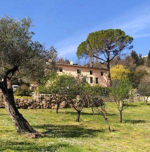 Objekt.Nr.: S1100: EINZIGARTIGE IMMOBILIE - FRANKREICH - BARGEMON -  UNWEIT VON CÔTE D' AZUR - Anwesen mit einzigartiger Gartenanlage mit alten Oliven