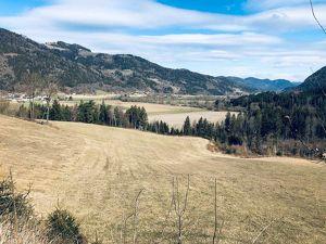 ++ 8,58 ha Pferdehof mit kleinerem Waldgrundstück ++