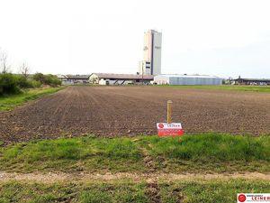Großzügiger Betriebsbaugrund in Enzersdorf an der Fischa!
