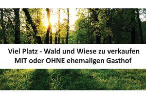 Viel Platz - Wald und Wiese zu verkaufen! MIT oder OHNE ehemaligen Gasthof