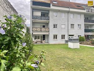 Schöne Gartenwohnung / 3 Zimmer / Mistelbach Stadtmitte