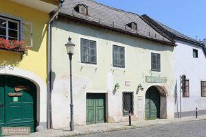RARITÄT IN NUSSDORF- Romantisches Winzerhaus aus dem 17ten Jahrhundert (sanierungsbedürftig)