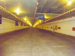 Lagerhalle nähe Autobahn - verkehrsgünstig & preiswert