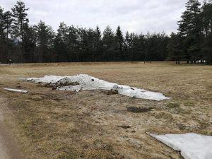 0,2 ha Wiesenfläche zu verkaufen