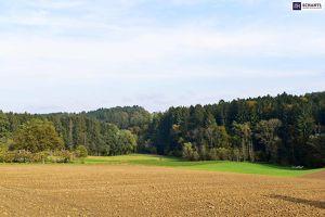 IDYLLISCH WOHNEN! Wunderschöne Häuser inkl. Top Ausstattung inGleisdorf! Traumhafter Eigengarten! PROVISIONSFREI!