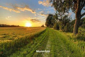 Land und Forstwirtschaft, Bernstein Versteigerungsobjekt