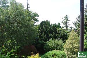 Blick zum Kahlenberg - Traumhaftes Objekt in Top Lage! 5 Zimmer mit Garten umgeben von viel Natur! SOMMERAKTION 3% Reduktion auf den Kaufpreis