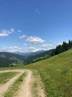 ++ ca. 8 ha Bauernhof mit top Aussicht, sehr sonnige, ruhige Lage ++
