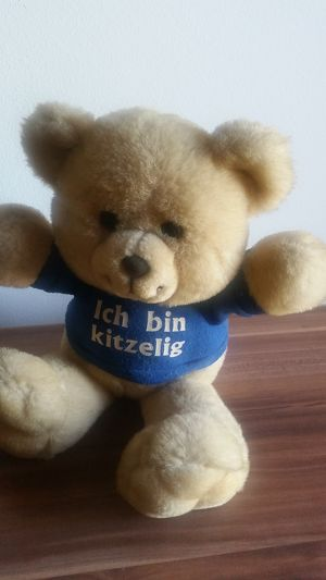 Sprechender Teddybär