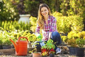 Gärtner Assistent