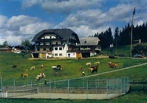 Almgasthof sucht Nachfolger/Nachfolgerin