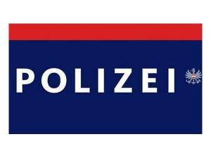 133 - Polizei