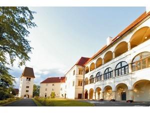 Schloss Seggau & Bischöflicher Weinkeller