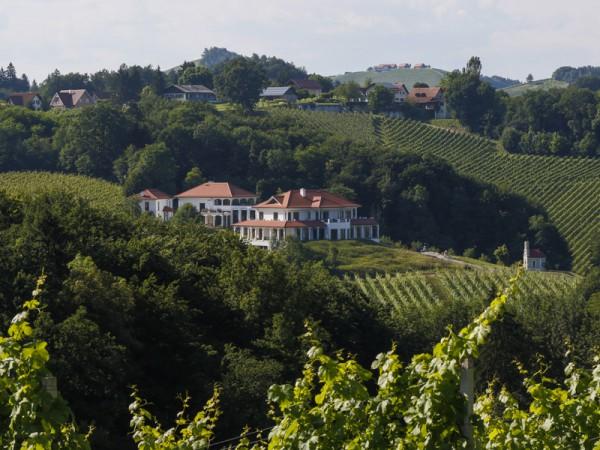 Das Weingut am Seggauberg