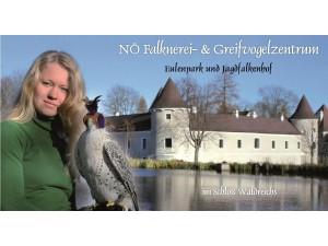 NÖ Falknerei- & Greifvogelzentrum - Schloß Waldreichs